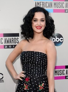 2013 American Music Awards - Red Carpet